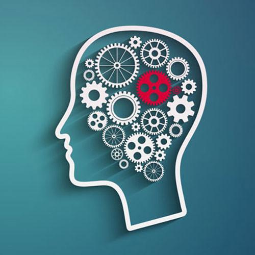 مدیریت جلسات روان درمانی و دورههای آموزشی